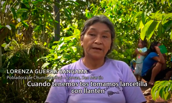 Mujeres Indígenas frente a la crísis climática Guardianas del bosque y de la vida
