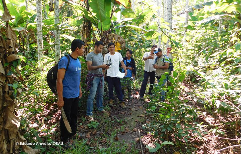 INICIATIVA MDE SAWETO PERÚ IMPLEMENTARÁ 53 SUBPROYECTOS PARA 247 COMUNIDADES EN LA AMAZONÍA PERUANA